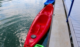 paddle boards and kayak rentals- 2.jpg